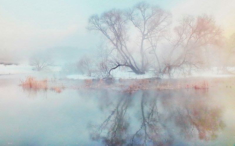 раніца, река, сонейка Зімовая раніцаphoto preview