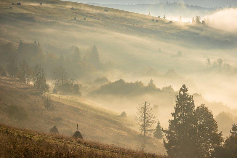 карпаты. осень. туман. рассвет Карпаты. Рассвет в долинеphoto preview
