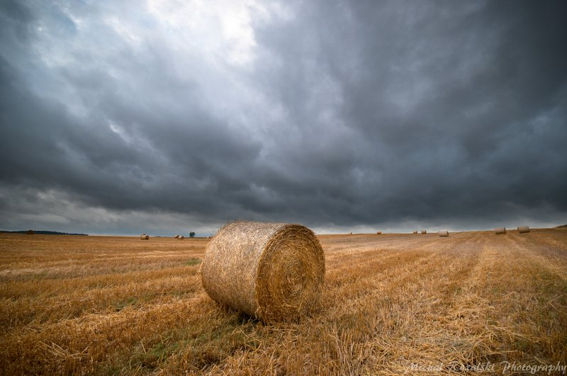harvest, ,agriculture, ,season, ,summer, ,crops, ,sky, ,clouds, ,orange, , Harvest time under the steel dark sky.photo preview