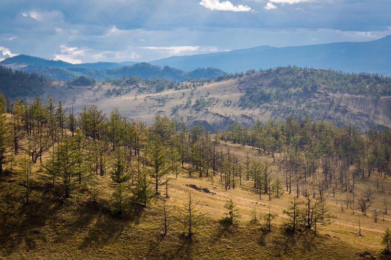 горный, пейзаж, бурятия, тажеранские, степи, сибирь, дальний, восток, Объем и перспективаphoto preview