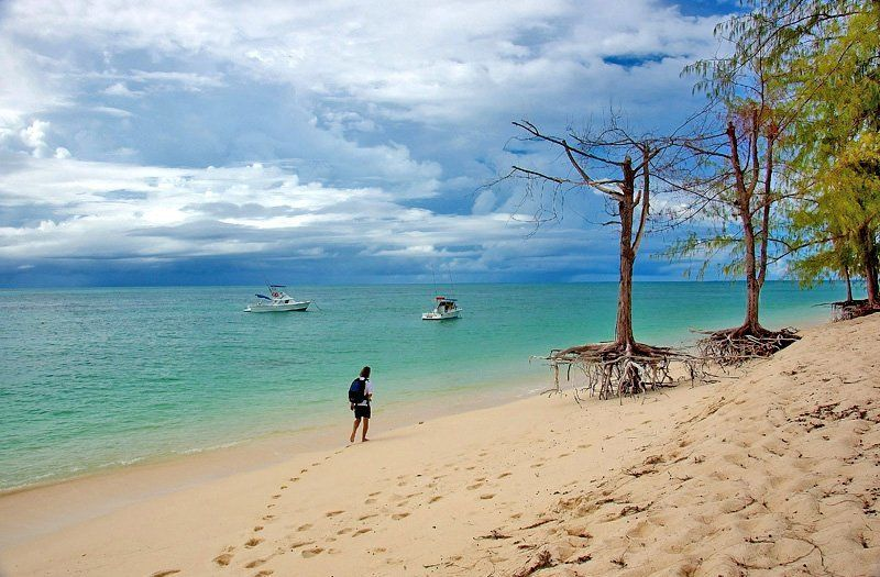seychelles И на песке растут деревья.....photo preview