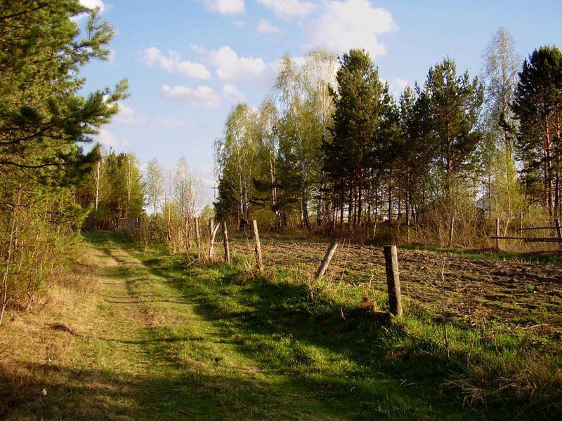 весна, вечер, тропинка, забор, лес Теплый весенний вечерphoto preview
