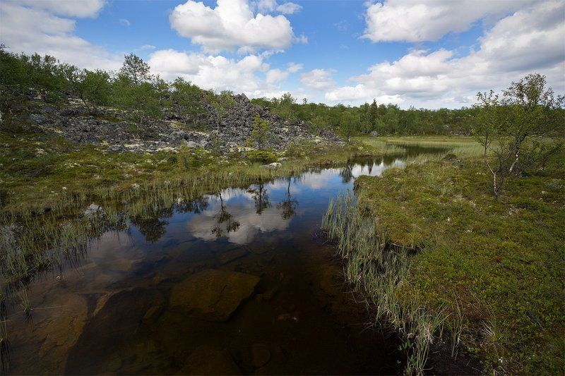 кольский, полуостров, лето, ручей Зеркало форельевого ручьяphoto preview