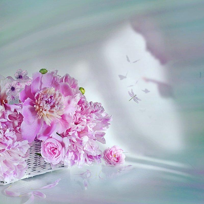 Натюрморт пионы корзина  стрекоза секрет радость любовь Зимняя мечтаphoto preview