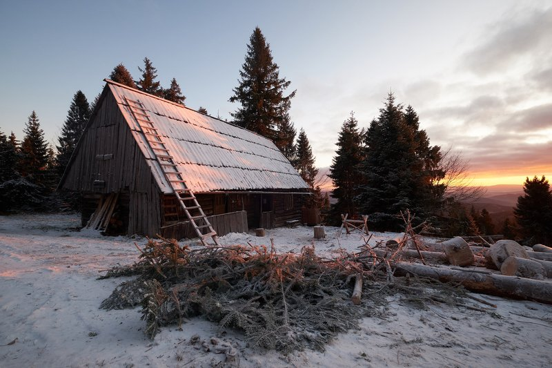 mist,mountains,hut,sunrise,tree,cold,frozen Hutphoto preview