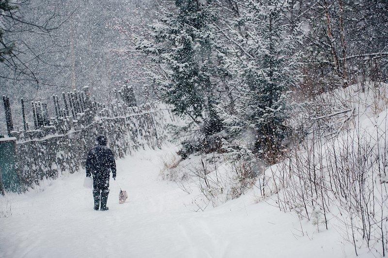 зима, снегопад, лес, природа, урал, златоуст Снежная прогулкаphoto preview