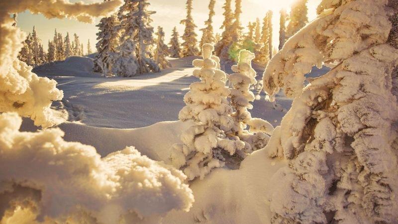 шерегеш, утро, восход, солнце, снег, зима, сибирь, сугробы Позолота Шерегешских склонов.photo preview