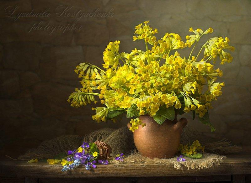 натюрморт с примулами,весна,букет,цветы,художественное фото,искусство. photo preview