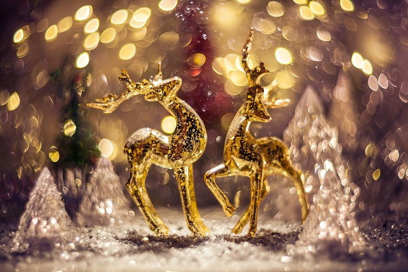 новый год, праздник, боке, елка, bokeh, newyear, олени, гелиос Новый год к нам мчитсяphoto preview