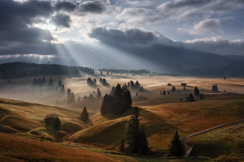dolomites, dolomiti, mountains, alps, unesco, italy, mist, fog, clouds, sunrise, morning, light, mood, trees, meadows, huts, alpe di siusi Let There Be Light!photo preview