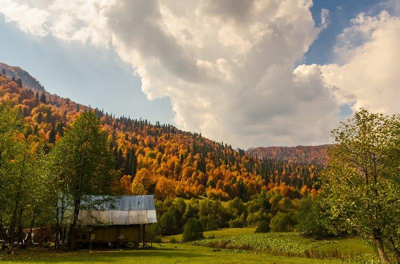 nevant60, пейзаж, красота, природа В горах Абхазииphoto preview
