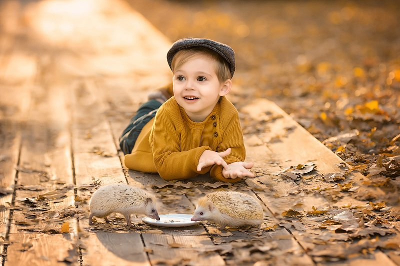 фотограф, зеркальный фотоаппарат canon mark iii, фотопрогулка, осень, малыш, ребенок, мальчик, детская фотосессия, детский фотограф, счастье, радость, дети на фото, детская фотография, любовь, ежики, закат, красота, восторг *****photo preview