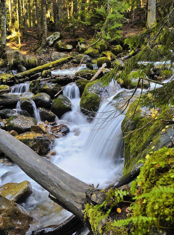 муруджу, река, осень Муруджуphoto preview