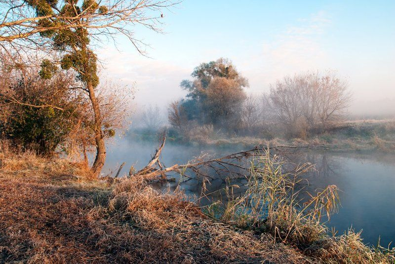 утро, речка, туман осеннее утроphoto preview