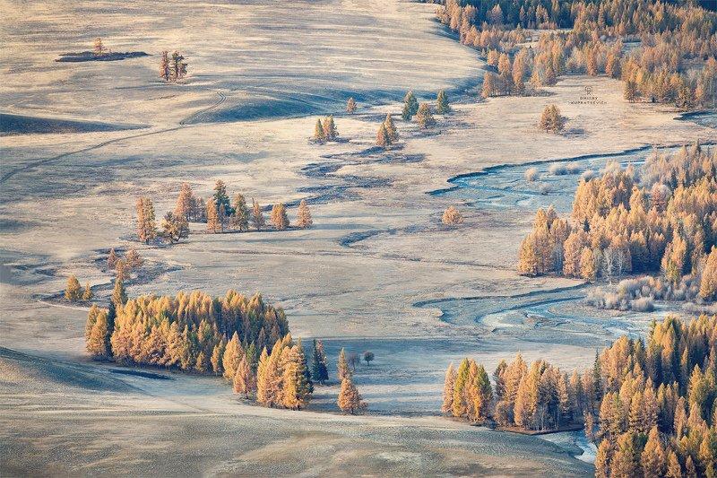 алтай, россия, курай, горы, осень, пейзаж, природа, степь Осень в Курайской степиphoto preview