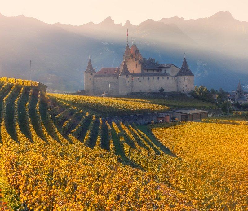 château d'aigle, switzerland, sv-phototravel.com Château d'Aiglephoto preview