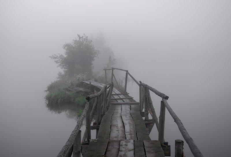 утро туман река мостик Туманная бездна.photo preview