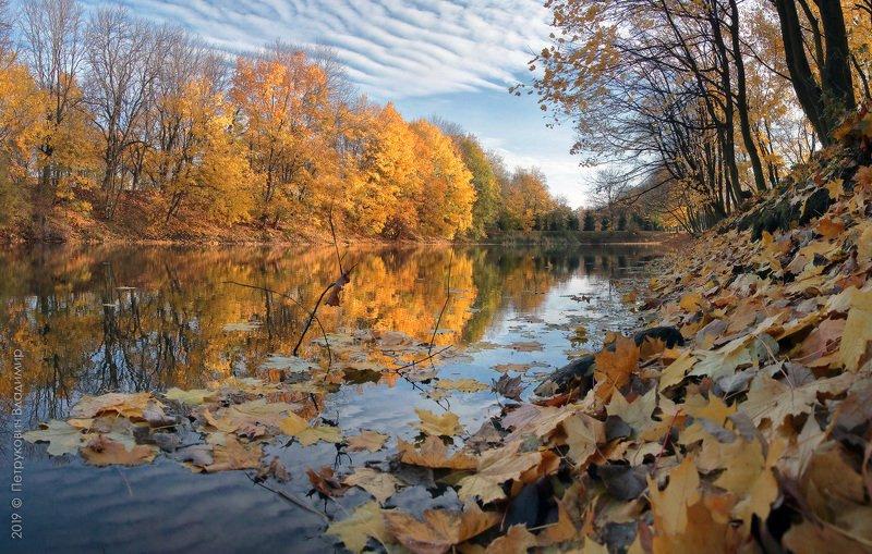 Осень в Южном парке.photo preview