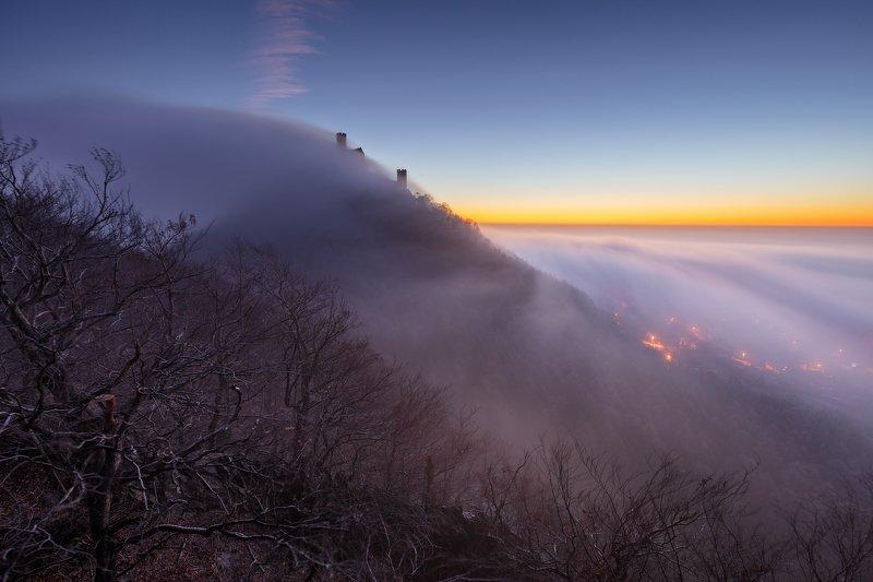 castle, czechia, czech republic, hill, trees, winter, fog, mist, clouds, sky, twilight, dawn, morning, light, mood, atmosphere, dark, landscape Castle in the Cloudsphoto preview