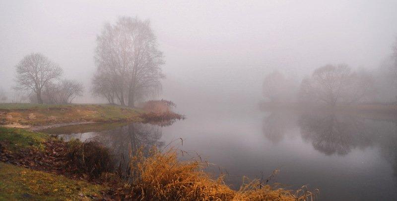 утро, река, туман Пасмурное утроphoto preview