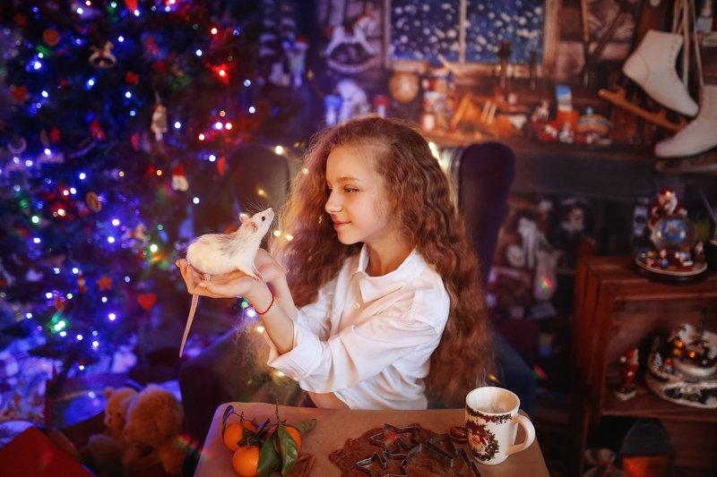 новый год год крысы рождество Символ годаphoto preview
