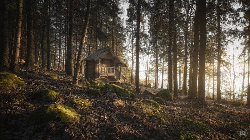 карелия, лес, кирьявалахти Карельские сказкиphoto preview