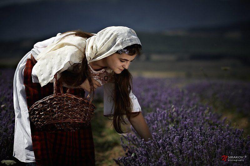 lavender, picker, fields, landscape, portrait, genre, bulgaria, dress, nsirakov Lavender Fieldsphoto preview