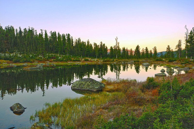 Озеро мишек,любящих сгущенку.photo preview