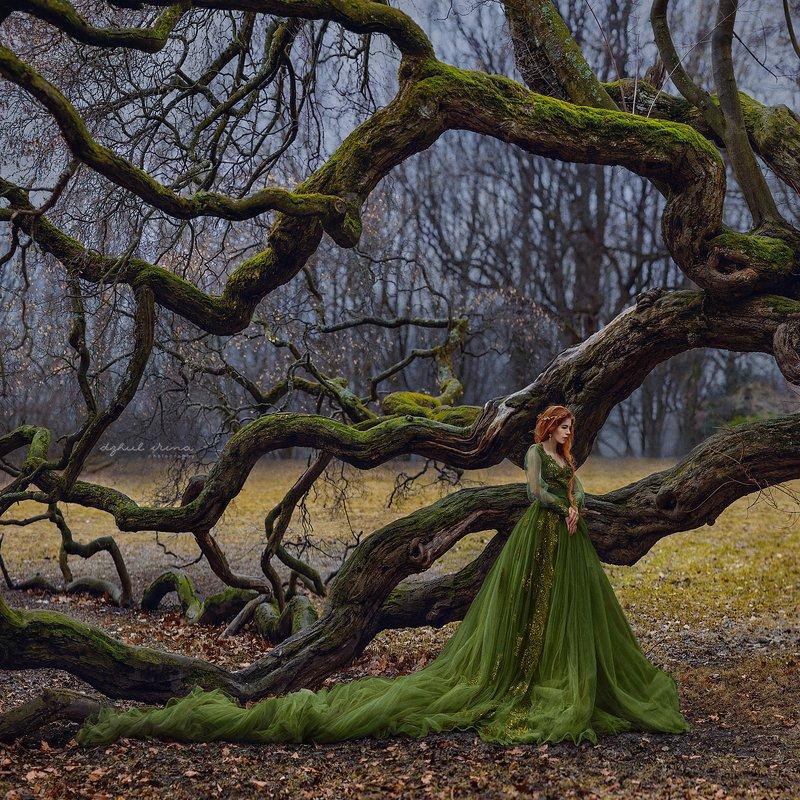 portreit, people, girl, woman, irinadzhul, dzhulirina, green, forest, trees The soulphoto preview