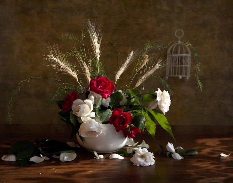 розы С розамиphoto preview