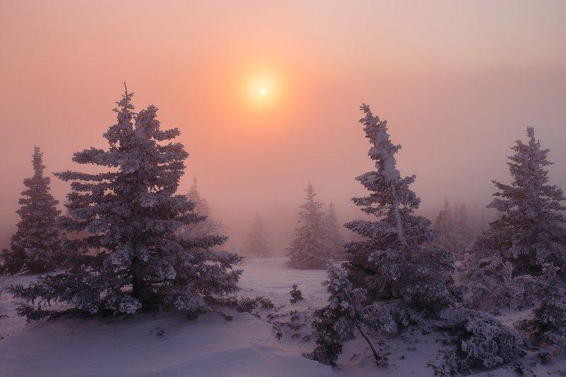 природа, урал, уреньга, зима, рассвет, снег, солнце, метель Рассвет на Уреньгеphoto preview