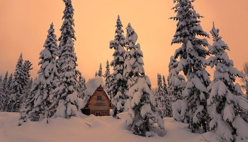 кузбасс, кузнецкий алатау, зима, мороз, сугробы, белый, лес, То ли сказка, то ли быль...photo preview