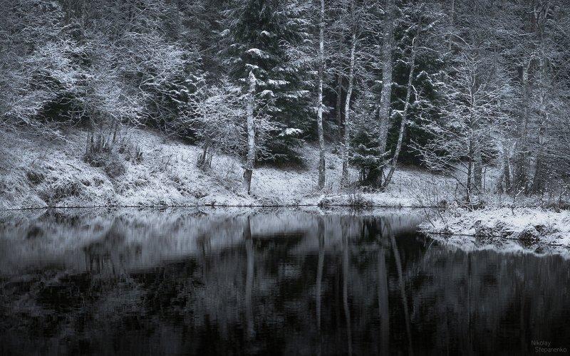ленинградская область, снег, зима, река, отражение, лес photo preview