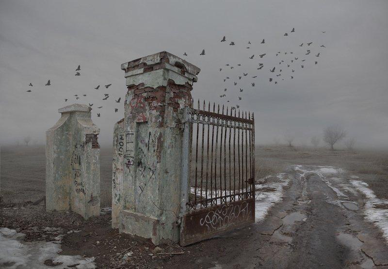 туман Сад забвенияphoto preview