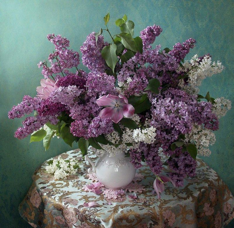 весна, натюрморт, букет цветов,сирень, тюльпаны, марина филатова Сиреньphoto preview