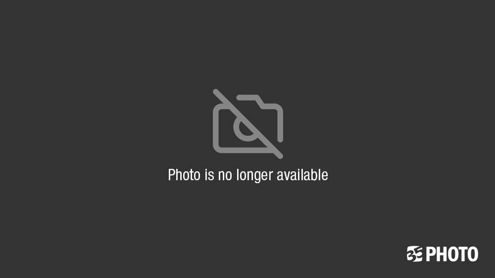 Admiring The Alpine Fallphoto preview