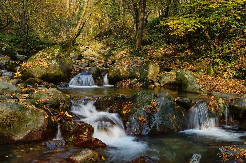горы река осень Осенняя речкаphoto preview