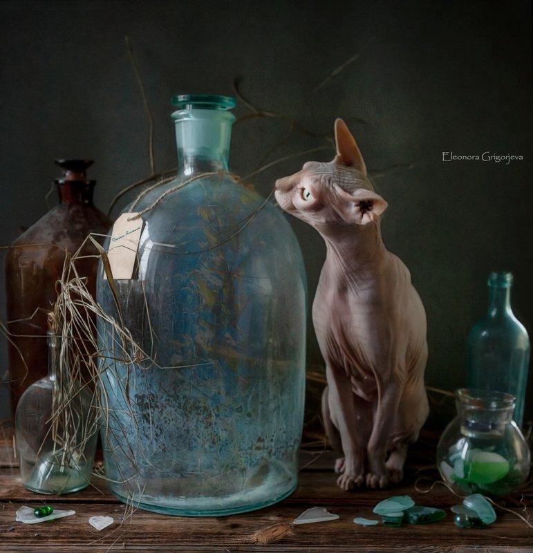 Оливия и стеклянная бутыльphoto preview