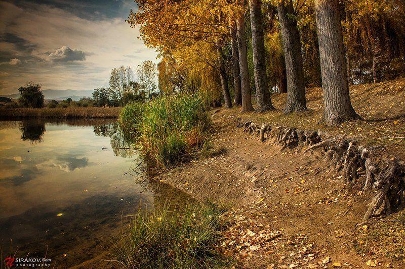 lake, bulgaria, lesichevo, forest, autumn, landscape, nature, cloud, vacation, tourism, nsirakov Магия утраphoto preview