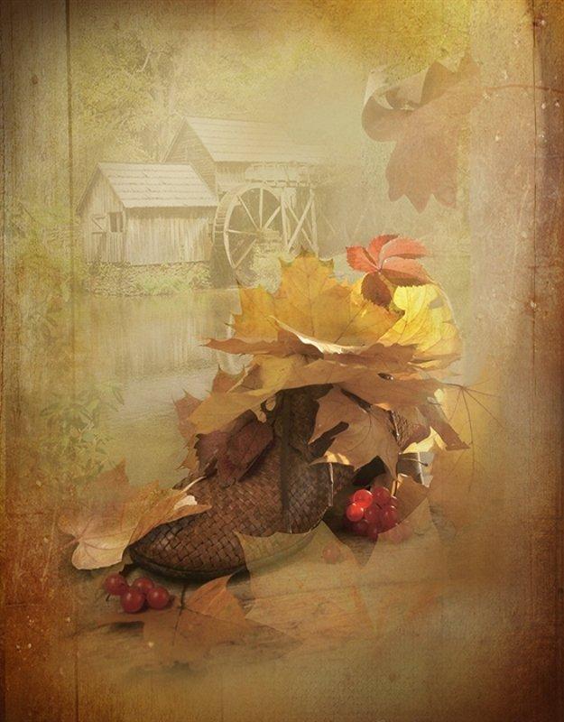 Натюрморт осень листья калина свет Осенние листьяphoto preview