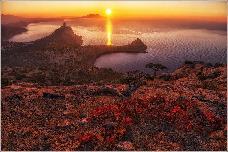 крым, новый свет, утро, солнце, море, дорожка *  *  *photo preview