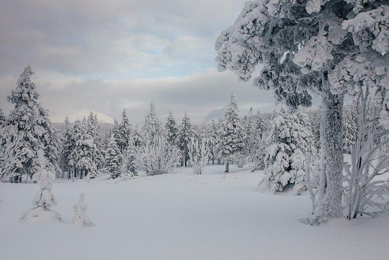 урал, горы, таганай, россия, зима, природа Снежное царствоphoto preview