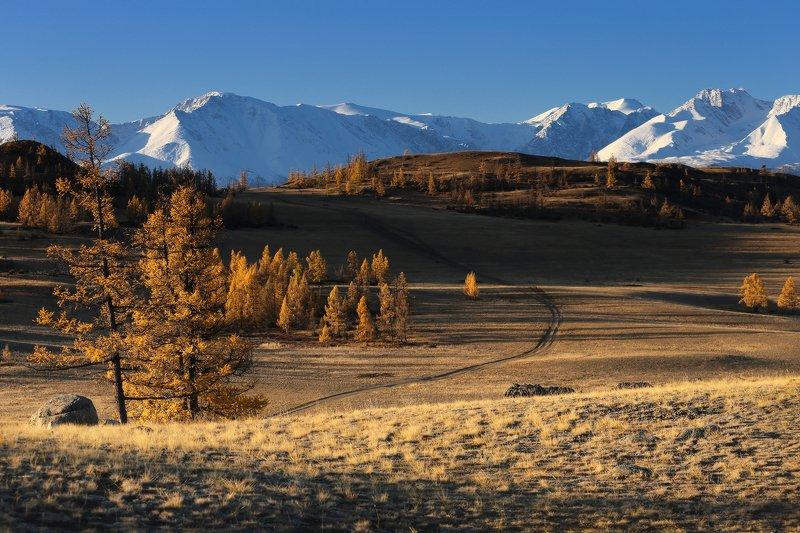 алтай, горный алтай, горы, сибирь, курай Немного осенних красокphoto preview