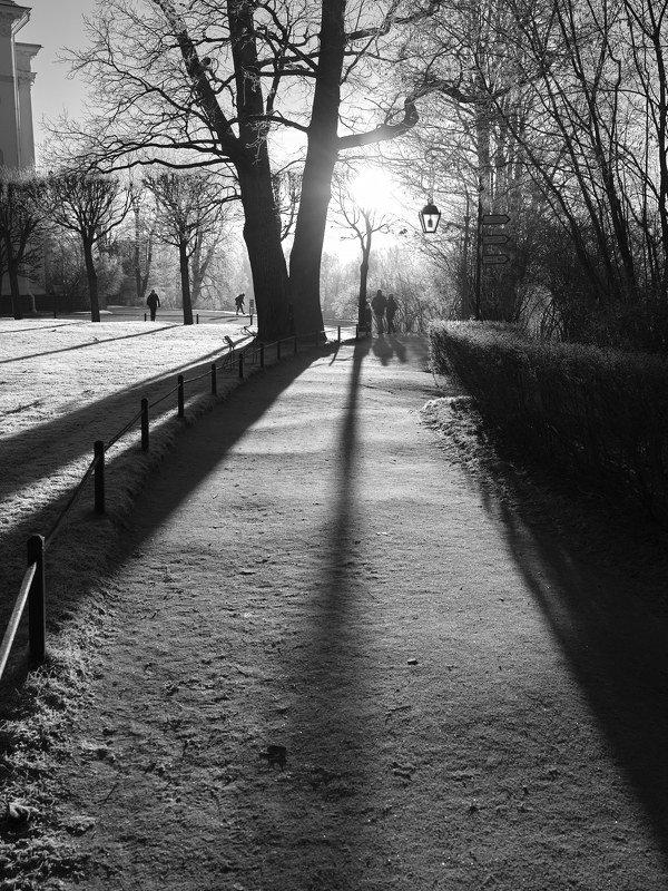 павловск, мороз, солнце, люди, контровой свет 3.photo preview