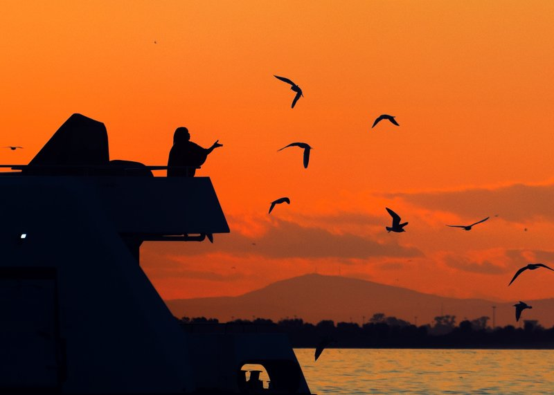 street,photography,izmir,sunset,silhouette evening at izmirphoto preview