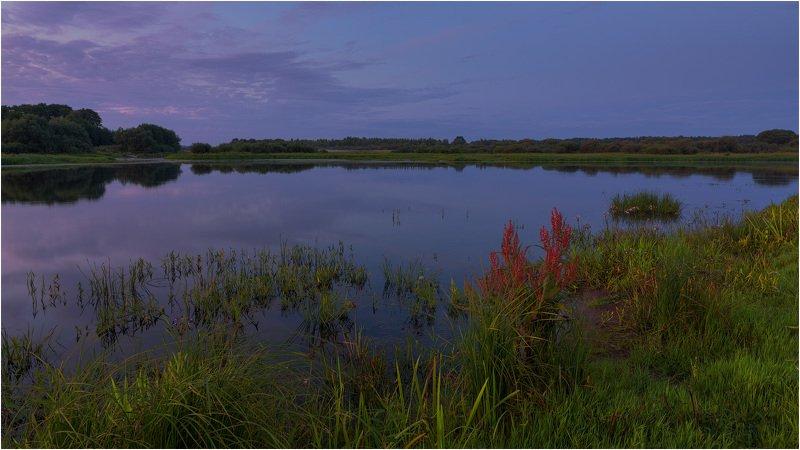 река березина, вечер, июль, зелень, отражение Летним вечером на берегуphoto preview