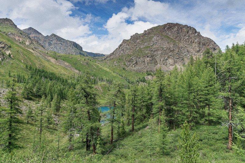горы, лето, озеро, Горный Алтай Горное озеро.photo preview