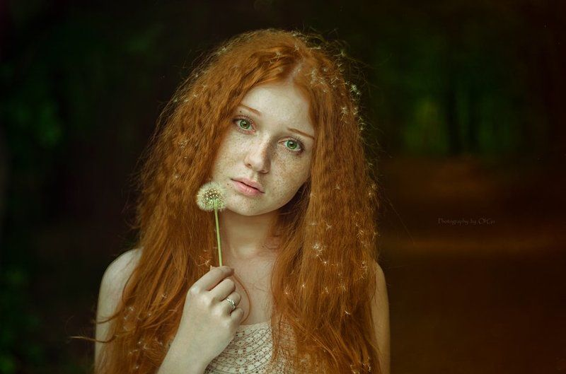 рыжие волосы, зеленые глаза, одуванчик the girl with dandelion hairphoto preview