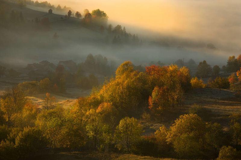 landscape, autumn Autumnphoto preview