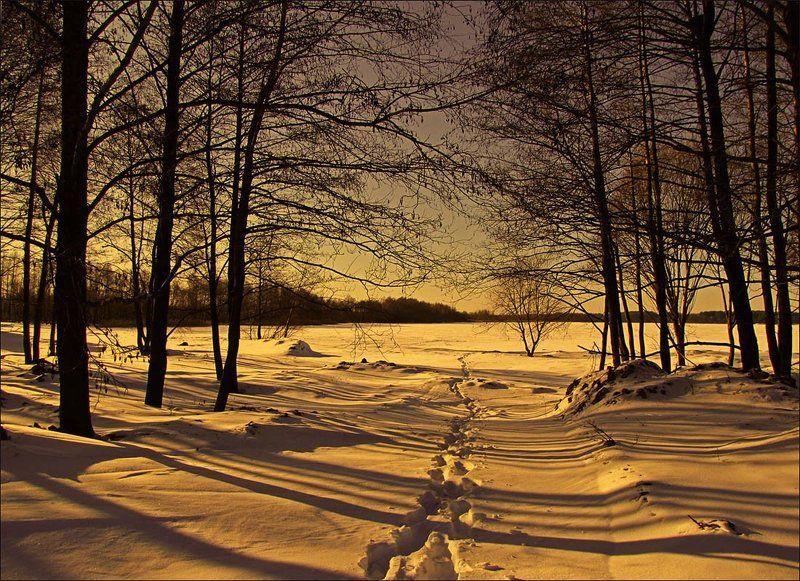 Тени на снегу...photo preview